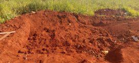 Terceiro corpo achado sem cabeça na Grande Goiânia em uma semana é identificado pelo IML