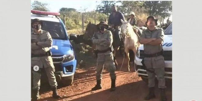 Criminosos furtam 55 cabeças de gado girolando da zona rural de Pirenópolis